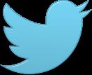 bird_twitter_new_single